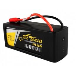 TA-PLUS-15C-16000-6S1P - TATTU BATTERIE LIPO 6S1P 16000MAH 22.2V 15C